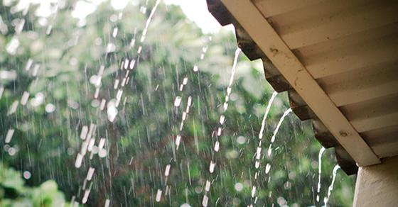 tả cơn mưa - ảnh 1