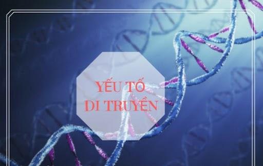 Yếu tố di truyền là nguyên nhân phổ biến gây mụn hiện nay