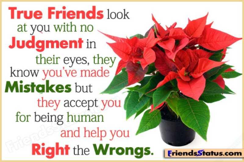 Những câu nói hay về tình bạn bằng tiếng anh