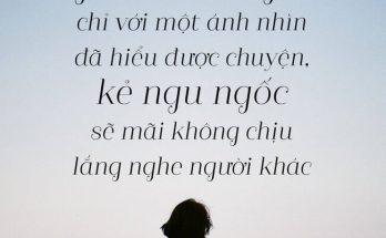 Tổng hợp những câu nói hay nhất về cuộc sống